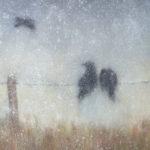 Winter Impression by Alexandra Lavizzari