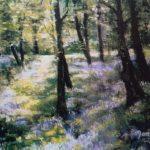 Bluebell wood by Dawn Mangan